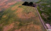 Uwaga Rolnicy! Informacje dotyczące wniosków suszowych