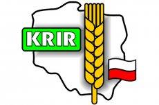 Wybory do izb rolniczych VI kadencji